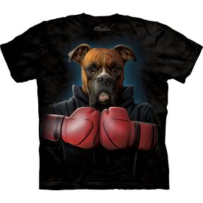 Boxer Rocky Adult