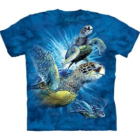 Find 9 Sea Turtles Adult