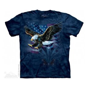 Eagle Defend Military T Shirt
